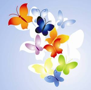 butterfly-orange-blue-design
